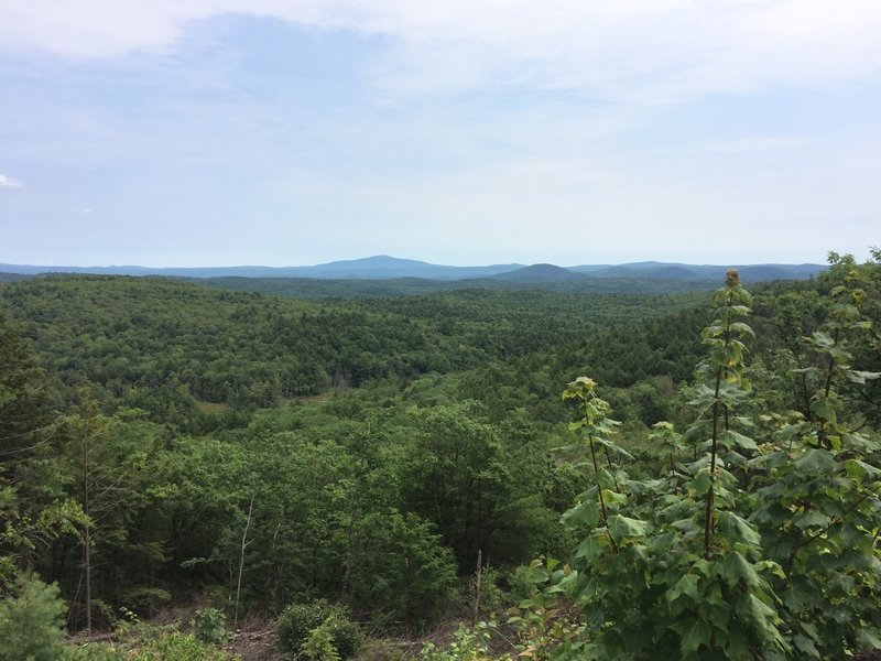Nice view on the Pisgah Ridge Trail. Saw a hawk gliding in this area right after!