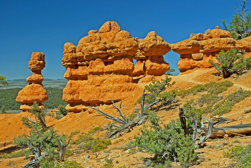 Golden hoodoos and walls on the Red Canyon Arches Trail