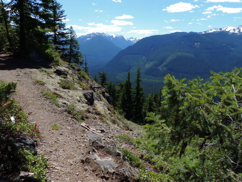 Looking east from the Palisades Trail #1198.