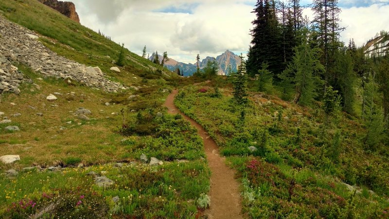 Approaching Easy Pass on the Fisher Creek Trail, the mountains on the other side start coming into view.