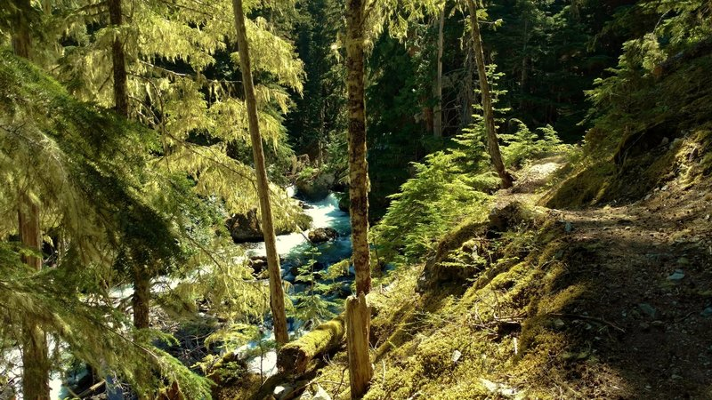 Fisher Creek Trail runs along cascading Fisher Creek