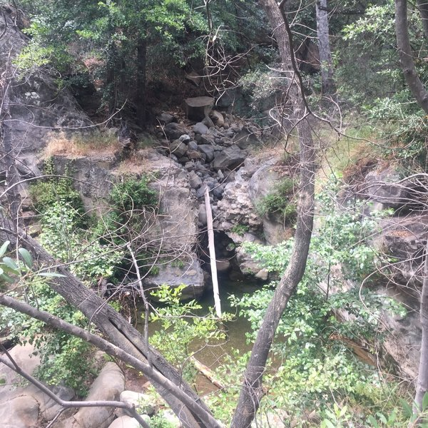 Following the creek