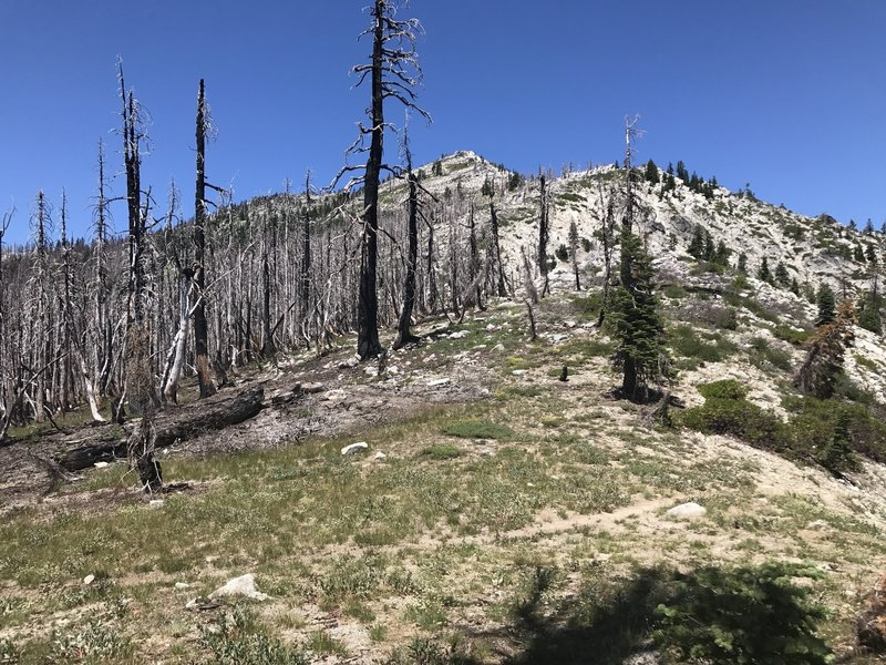 Pacific Crest Trail above Lipstick Lake in Russian Wilderness