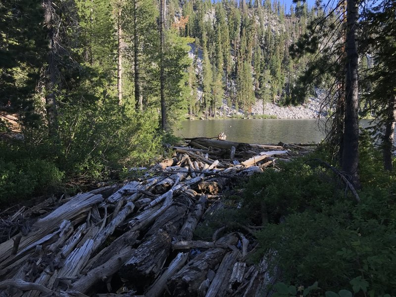 Crossing log-clogged outlet of Paynes Lake off Pacific Crest Trail in Russian Wilderness.