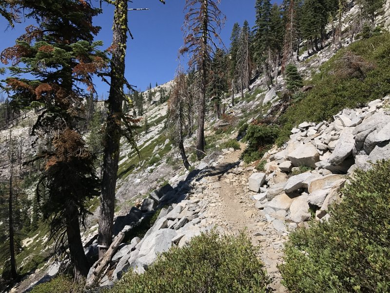 Pacific Crest Trail in Russian Wilderness