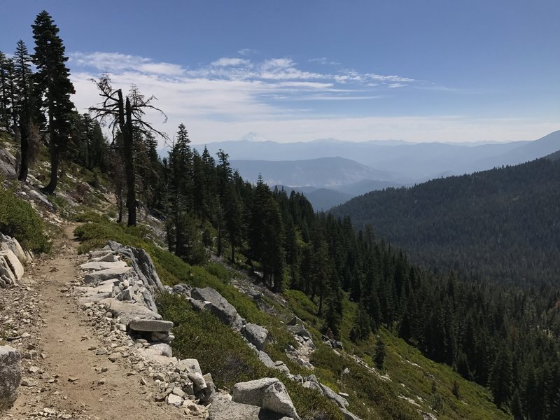 View of Mount Shasta from Pacific Crest Trail in Russian Wilderness