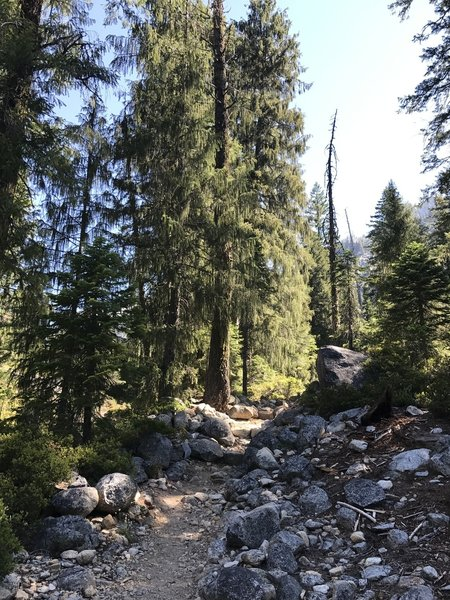 Canyon Creek Trail in Trinity Alps Wilderness