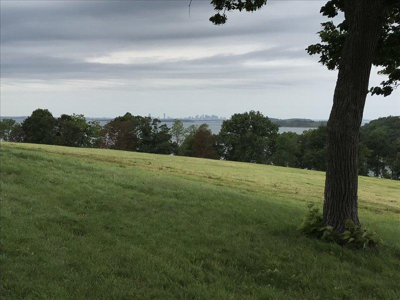 Boston skyline from Planter's Hill