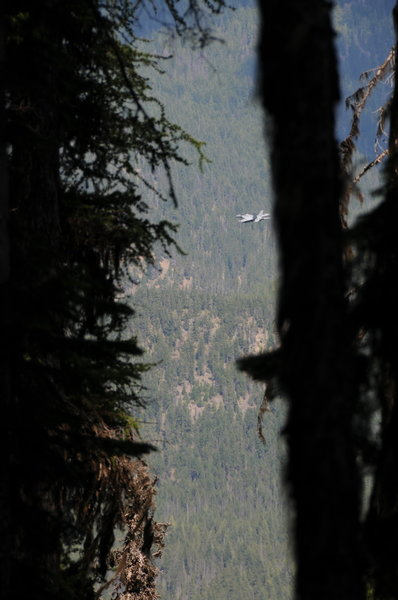 Occasionally the silence is broken by the roar of F-18s, which you'll hike/run above