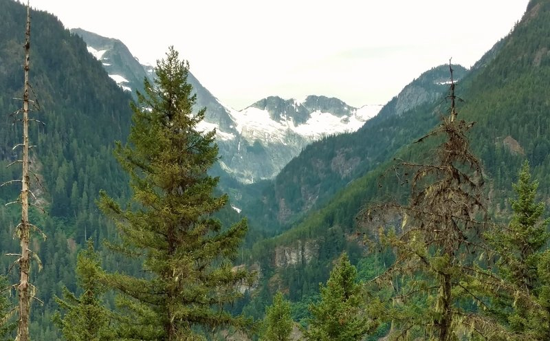 In the distance are Mount Torment, Forbidden Glacier, Inspiration Glacier, and Eldorado Peak, seen looking southwest up the West Fork of the Thunder Creek Valley, from Thunder Creek Trail