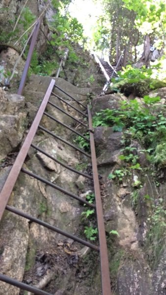 Ladders on the trail