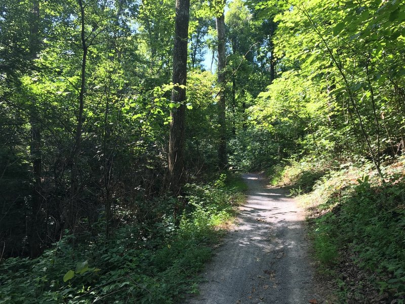 First section of the Central Hardwoods Scenic Trail