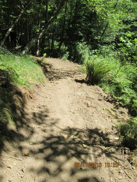 Jim Slagle Loop Trail