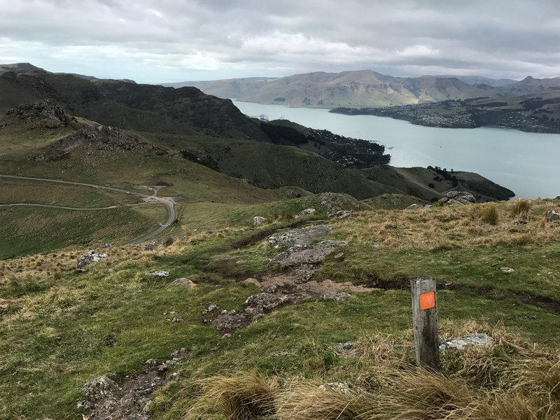 Looking towards Rapaki Saddle and Lyttelton from Summit of Mt. Vernon. Crater Rim Walkway