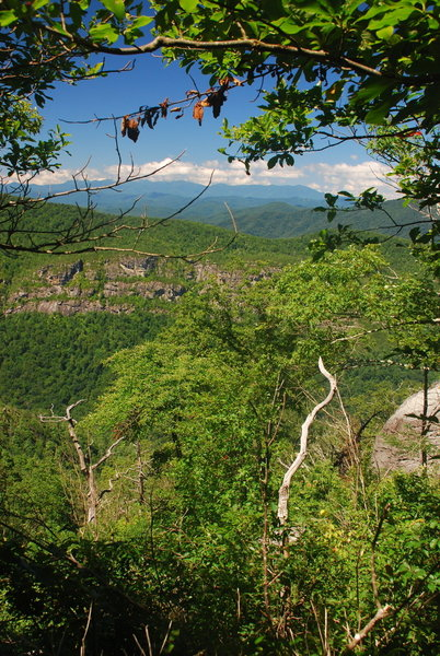Enjoy views of Linville Gorge and the North Carolina High Country on the trail leading to the peak.