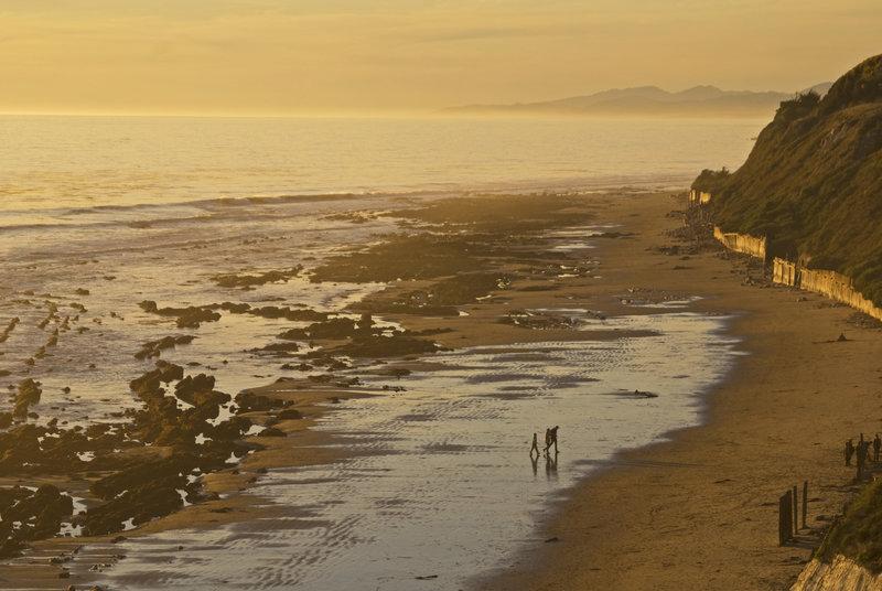 View of the Ellwood Beach Trail as it runs up the coast.