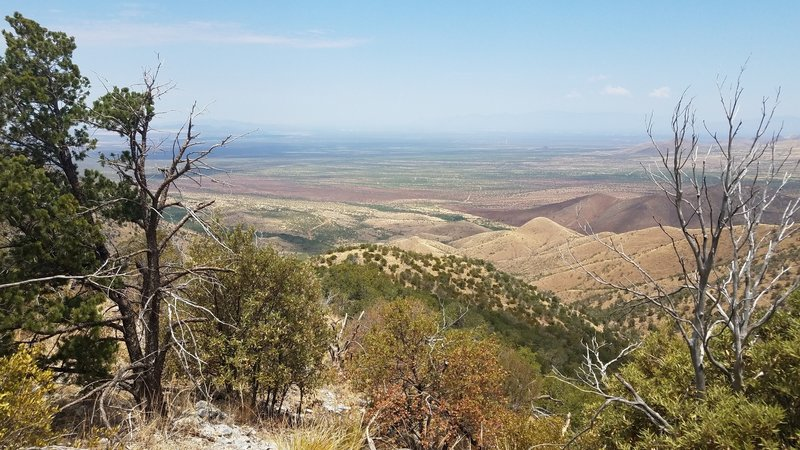 View west overlooking the Santa Rita Experimental Range and wildfire damage from the 2017 Sawmill Fire (the area the appears reddish in the middle of the photo)