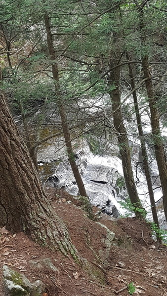 This pic was taken along the side of the falls.