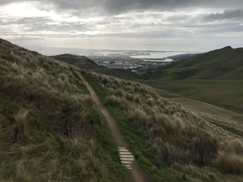 Mt Vernon Track with views down to Eastern Christchurch and Pagasus Bay