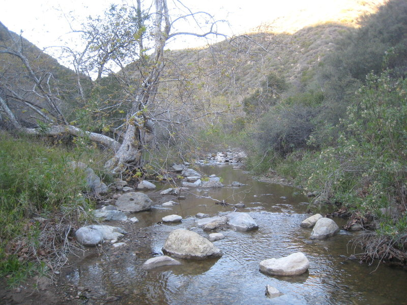Stream in Zuma Canyon.