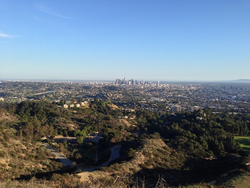 View of downtown L.A. from Glendale Peak.