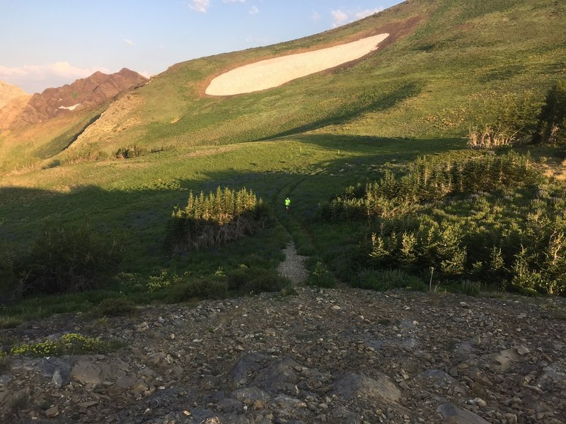 A view of the big snowfield (in early August), nearing the transition from doubletrack to singletrack along the AF Twins trail.