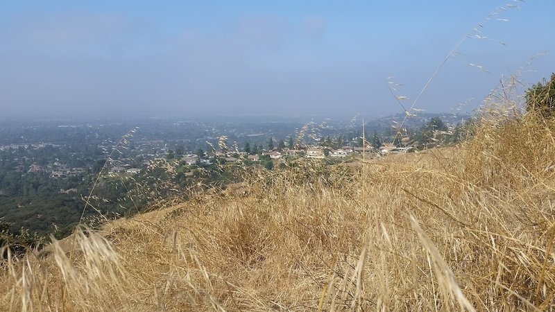 View of Claremont from high point.