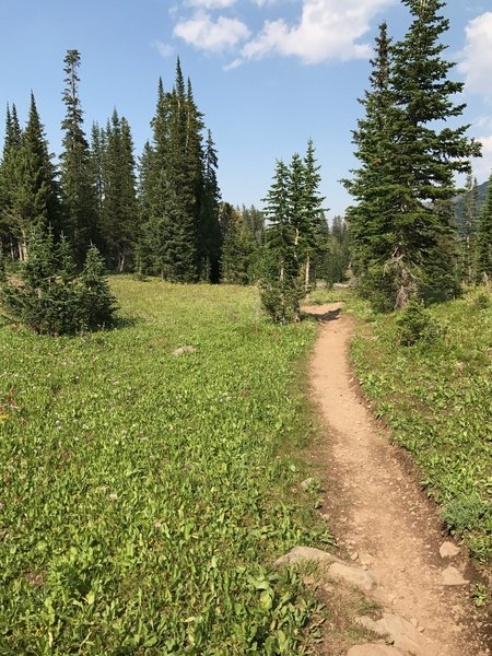Trail between Emerald and Heather lakes.