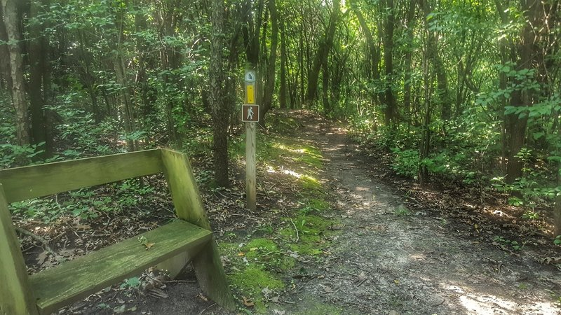 Waterville Trail