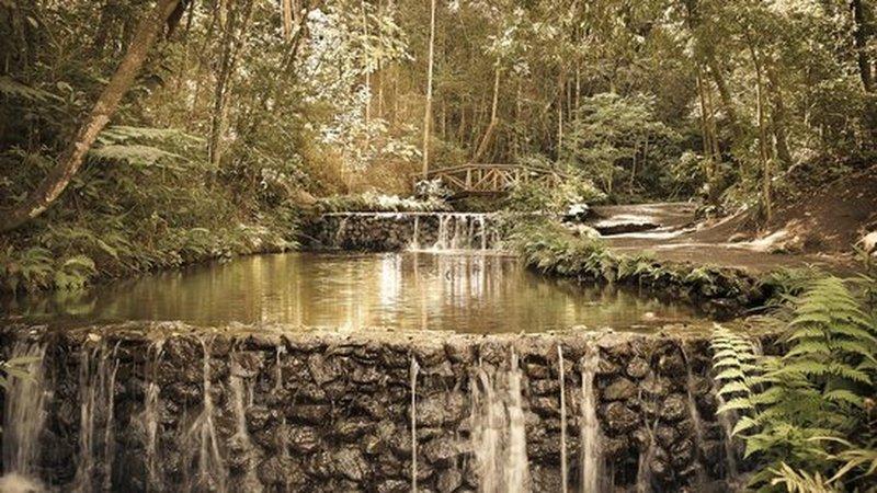 The Cascatinha is just near the entrance of Mangabeiras Park.
