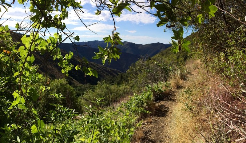 When you can take your eyes off the trail, Lower HJ has fantastic views that will have you forgetting you're not far from civilization.