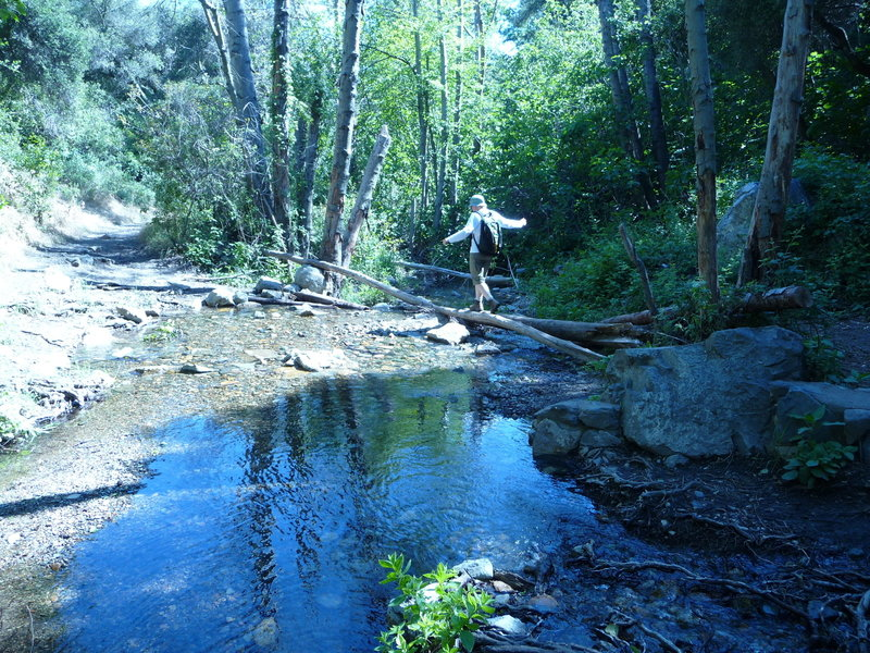 Linda crossing the creek