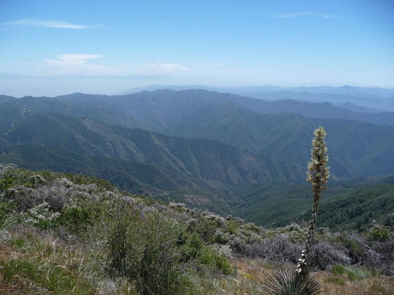 Santiago Peak view
