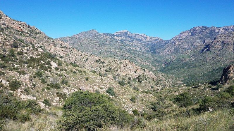 Along E Fork Trail towards Rattlesnake Pt