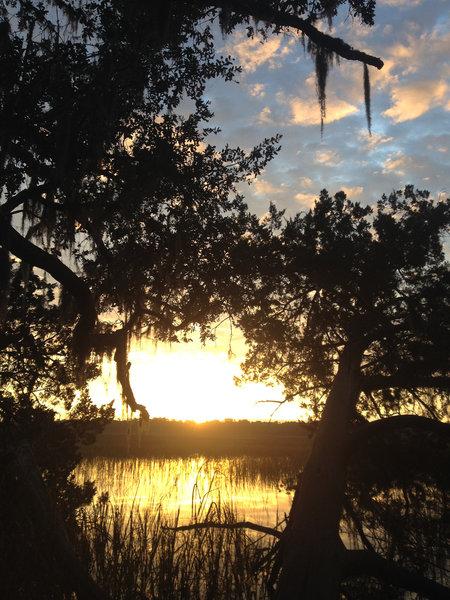 Sunrise over the marsh.