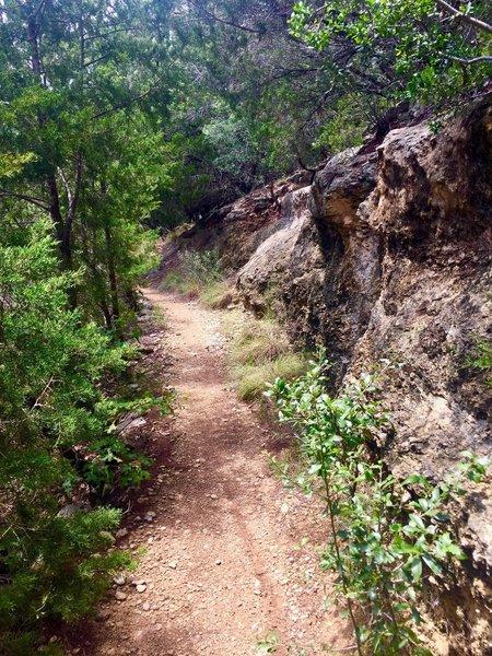Serene Loop Trail....