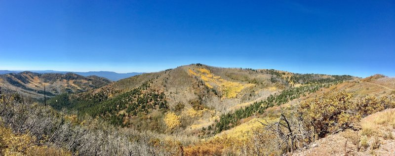 Amazing vista of fall colors near the apex of the climb along the highest ridgeline!