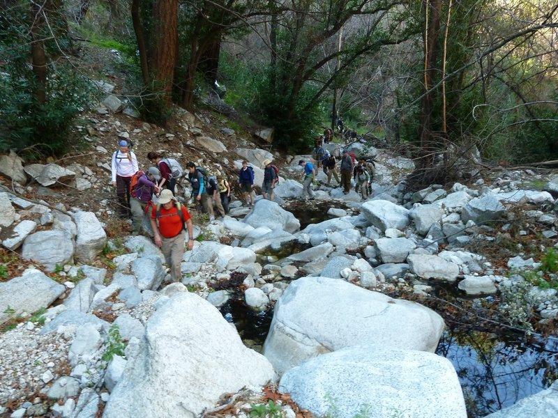 Sierra Club WTC Group Five, Winter 2012.
