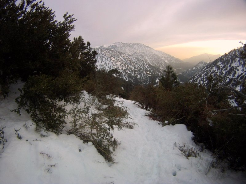 A snowy sunset from the Baldy Bowl Trail.