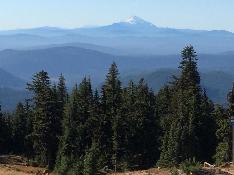 The view from the Timberline Trail towards Mt. Jefferson.  Photo by hproctor.