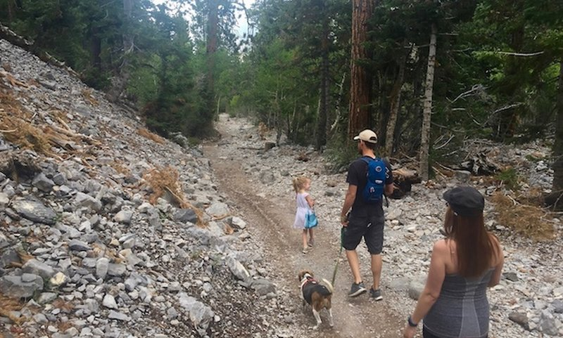 Family on the trail