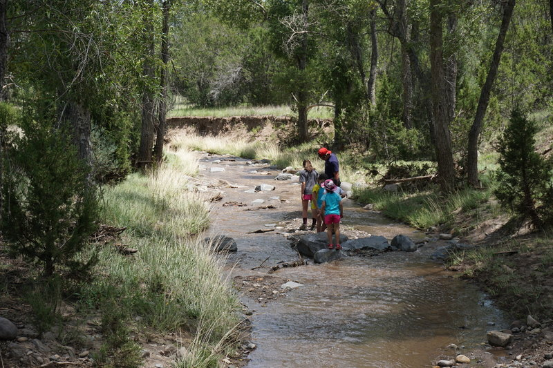 Cooling off in Bonito Creek.