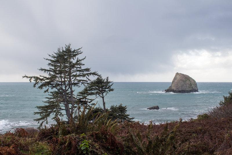 Ocean view from Yurok Loop Trail.
