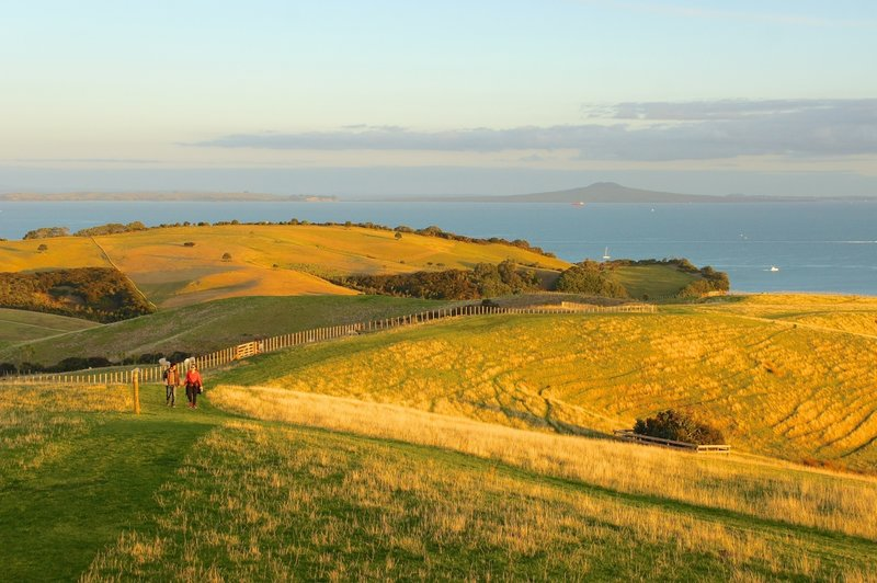 Shakespear Regional Park with Rangitoto in the background.
