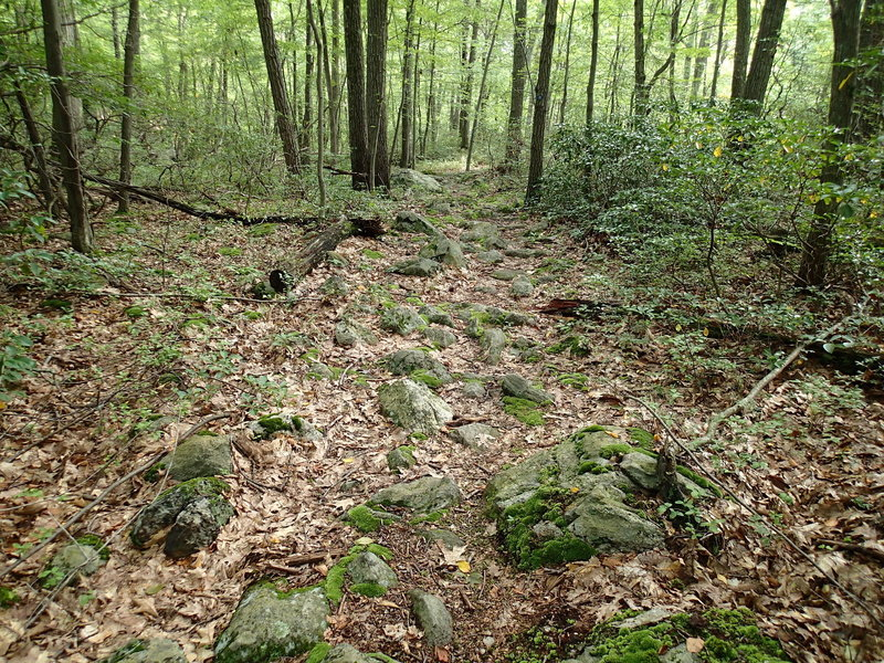 A very rocky section of the Wiccopee Trail.