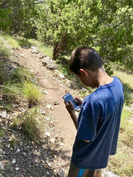 My son navigating us through our hike and creating new GPS tracks with the Hiking Project app ! :)
