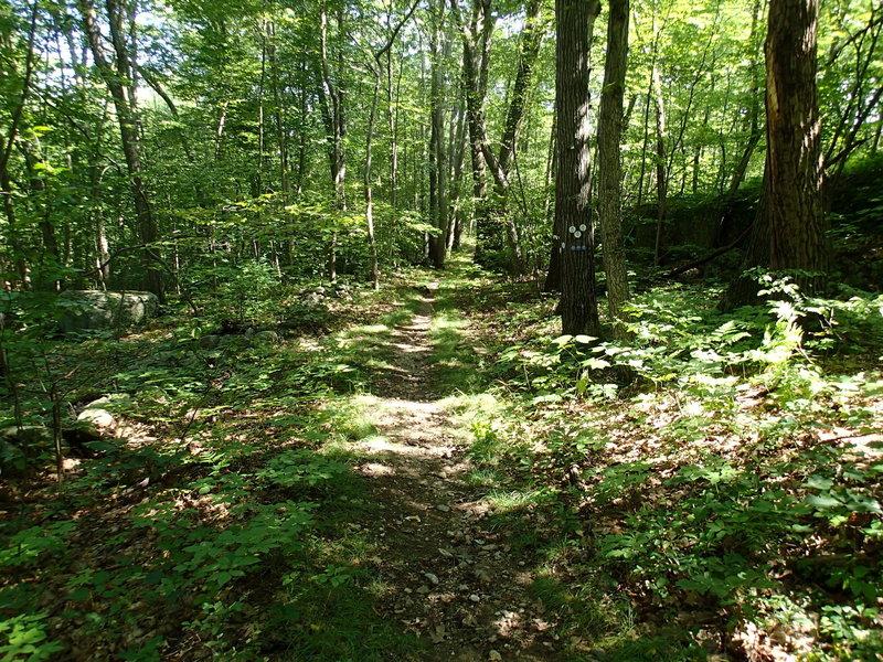 End of Clove Creek Trail.