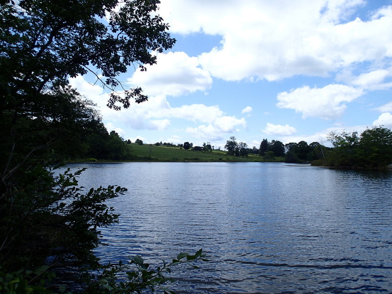 A nice view across Jordan Pond.