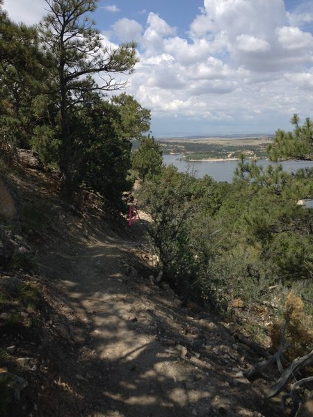 A view south along the trail corridor of the Narrows Bluff Trail.