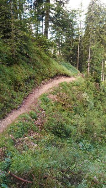 Pociace Trail